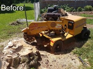 STUMP REMOVAL, BRUSH CHIPPING, TREE SERVICE
