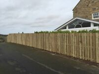 Fencing and Decking sale