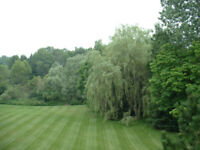 Lawn and Garden Maintenance Workers