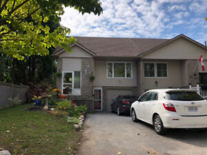 2 Bed Room Walkout Basement Apartment with Separate Entrance