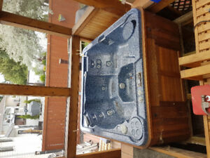 Hot tub and cover 650 OBO