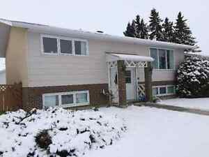 Great house for sale!