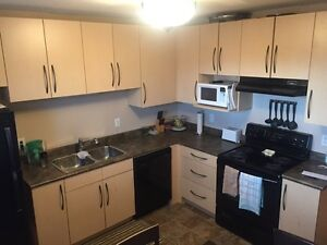 Fourplex 2 Bedroom in Eastview (heat & water incl) May 1st