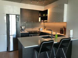 Beautiful 3 1/2 Modern Apartment for rent in Montreal Downtown!