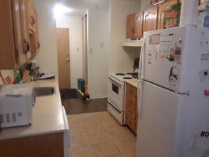 Roommate needed for May 1st, everything included.