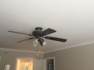 Light fixture and fan