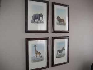 SET OF FOUR FRAMED WILD ANIMAL PRINTS