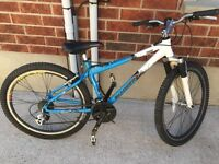 Schwinn Tessa ladies mountain bike