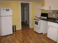 very bright & clean 1 bedroom basement apt available  Sept 1st