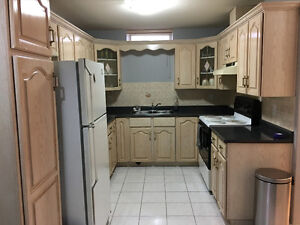 LOCATION!  Newly renovated basement suite Victoria & 49th, Van
