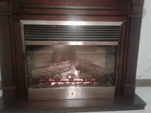 Luxurious authentic looking Electric fireplace for sale