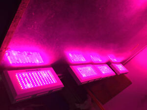 New ProGrow™ Indoor LED Grow Lights - Indoor Garden/Hydroponics