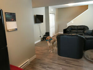 BRIGHT, NEWER SUITE, FRANK ROSS AREA