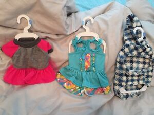 Small sized dog outfits