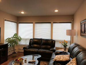 CUSTOM BLINDS AND DRAPES *FACTORY SALE** PRICE MATCH GUARANTY*