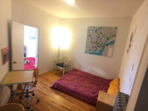 I need a new roommate // $550 // EVERYTHING included // Rosemont