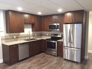 Newly Renovated Two Bedroom Basement Suite.