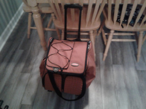 Thermos Cooler bag with wheels