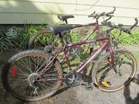 2 Mountain bikes - $40.00 each