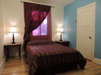 Beautiful room / Superbe chambre - Petite Patrie - 1er Décembre