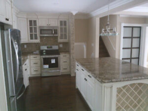 Bath and Kitchen renovations; fully renovated or build anew