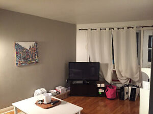 Newly Renovated 31/2 appartment 750$