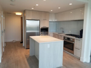 $2550 / 2br - 800ft2 - Luxury Brand New 2 Bed 2 Bath