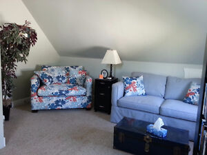Loveseat/sofa bed & chair/sofa bed