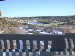DOWNTOWN RIVER VIEW FURNISHED 14TH FLOOR 1 BDR + 1            ,