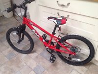 "'Blaze' kids mountain bike 20"""