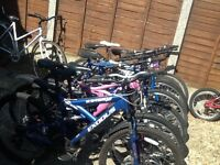 Adult Bikes To Clear All £30 Each