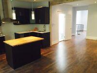 Appartement rénové, grand 4 1/2 Aire ouvertes, métro , 2 balcons