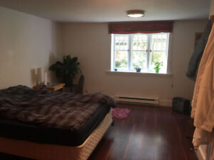 2 Bedroom Summer Sublet in Large Dunbar Basement Suite
