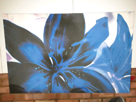 SPECIAL OFFER - Flowered Canvas