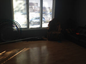 Roommate wanted for affordable downtown house Regina Regina Area image 2