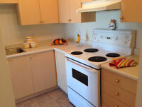 Valentine Special: Pay No Pet Fee! on 1BD Suite! Ready Mar1st!