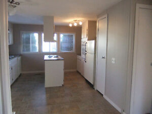 RENOVATIONS PLUS MORE **HANDYMAN SERVICES** Edmonton Edmonton Area image 2