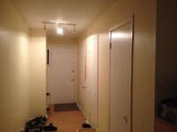 Appartement 1/1/2 a louer