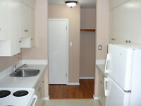 For rent, cozy & quiet one bedroom in downtown Oliver area.