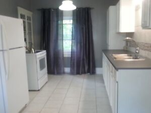 Spacious 3 Bedroom, 2 Story Apartment In Duplex In St. Stephen