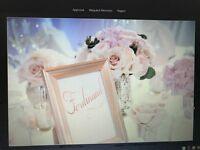 Wedding decorations-gold/blush theme