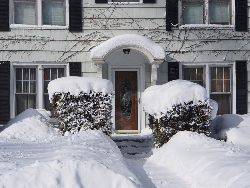 How to Protect Your Shrubs in Winter