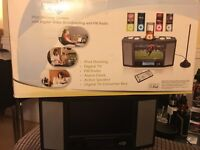 iPod docking system with radio and tv.