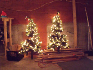 Two five ft trees with lights