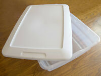 sterilite plastic containers multiple use
