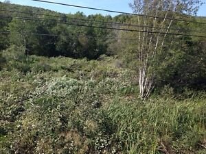 1 acre building lot in Wentworth NS