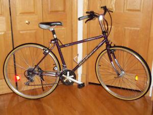 2 Vélos bicyclettes Hybrides vélo sport et vélo giant