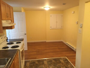 **Great 1-Br Apt in Portugal Cove Rd - 5 Min from Airport** St. John's Newfoundland image 5