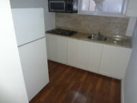 Beautifully renovated Bachelor for rent in great area of Toronto