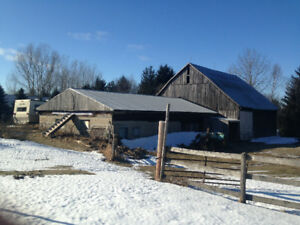 Farmland approximately 25 acres and barn for lease. Neat Midland